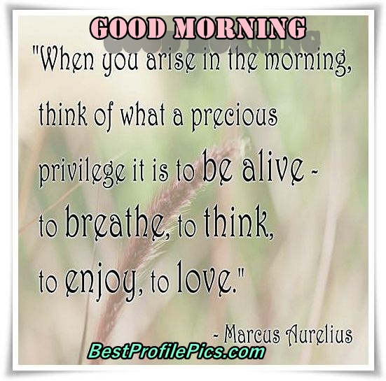 good-morning-quotes-pinterest